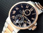Ulysse Nardin Le Locle Steel Kahve Gold Black